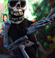 Balmy Alley event, skeleton costume